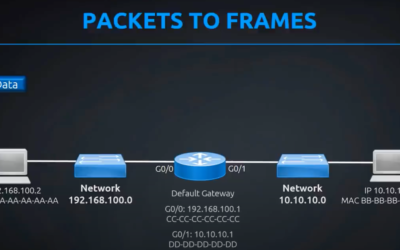 Explained: Routers, Packets, Switches and Frames